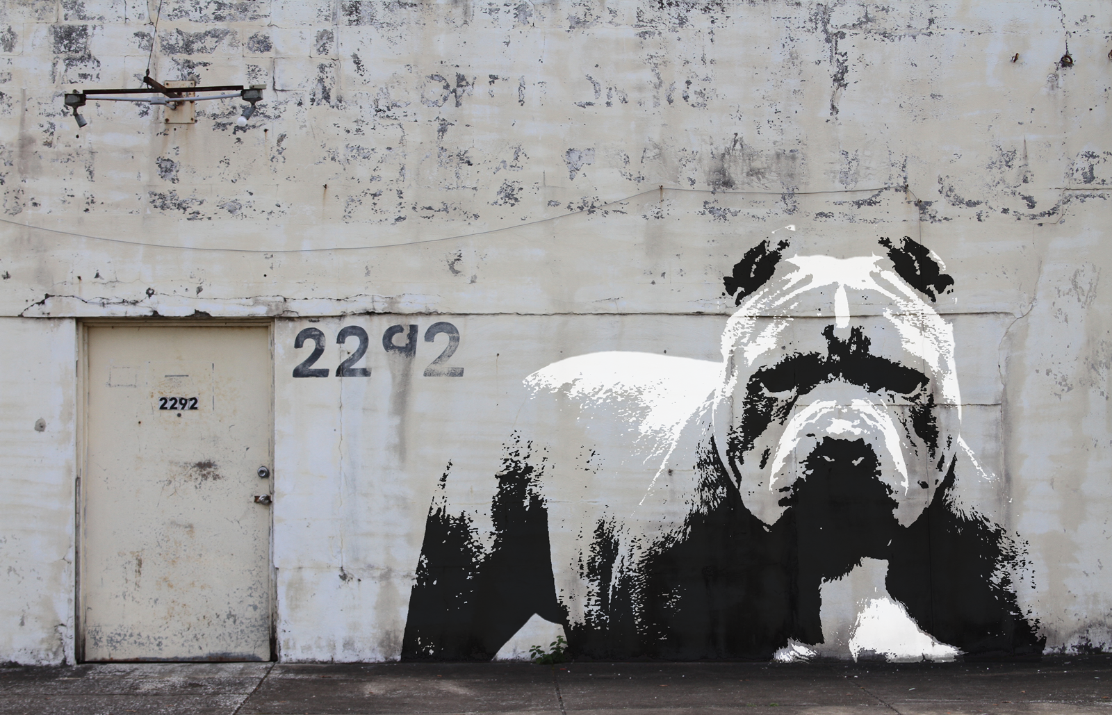 banksy pitbull