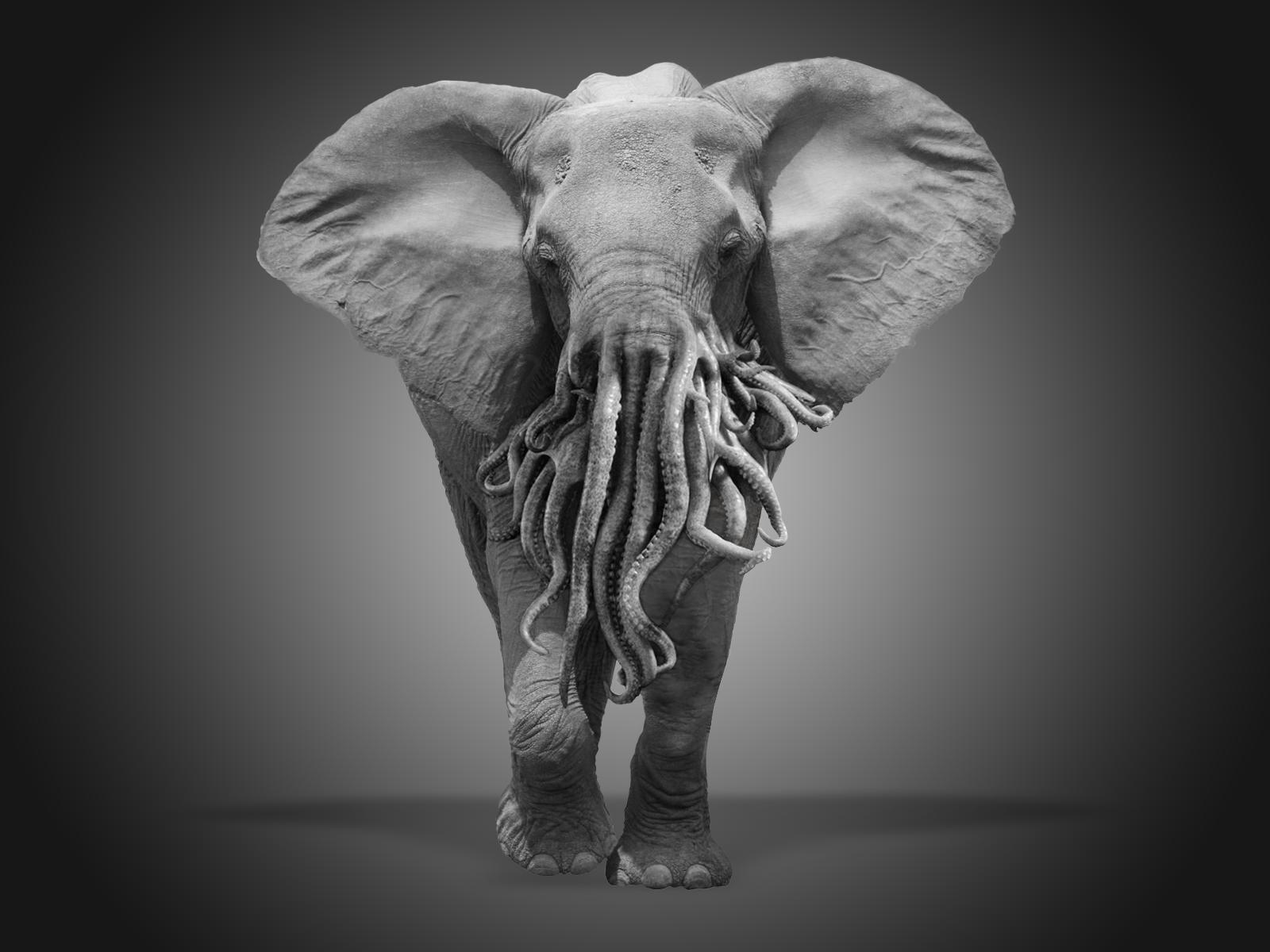 elephant-octopus